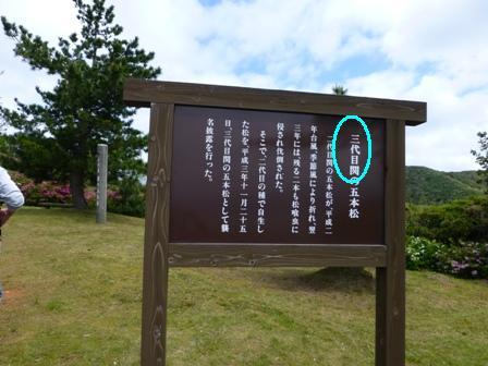 関の五本松公園15