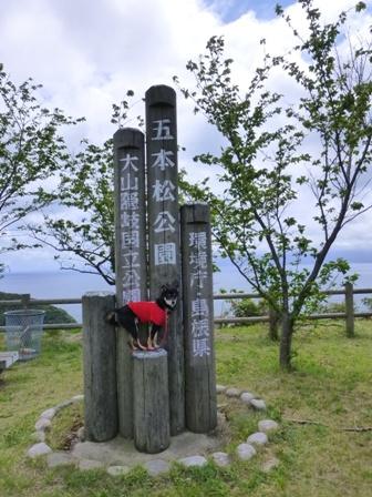 関の五本松公園20