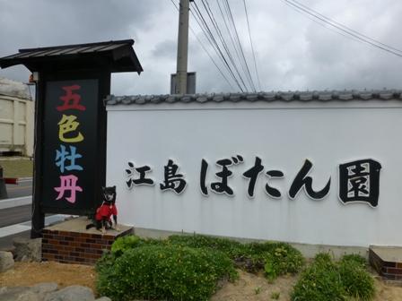 江島牡丹園1