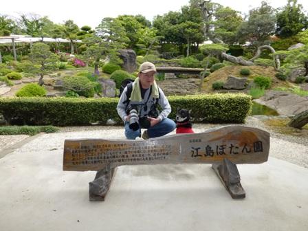 江島牡丹園18