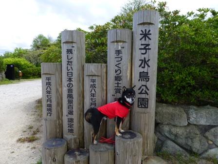 米子水鳥公園1