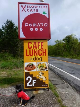 POMATO CAFE(ポマトカフェ)1