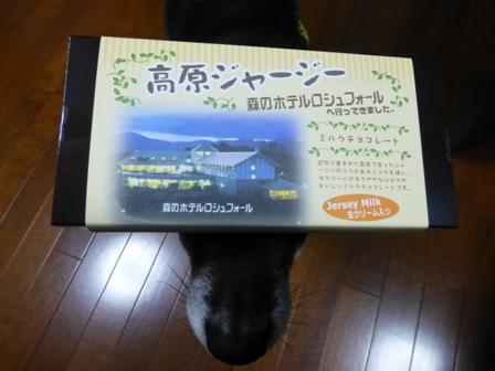 2013GW旅行お土産4