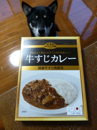 牛すじカレー1