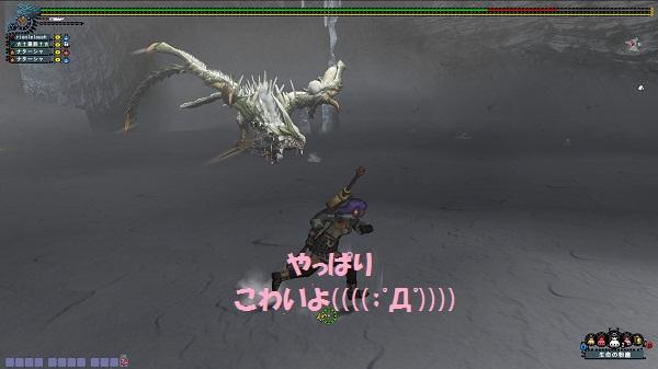 mhf_20121102_021123_490.jpg
