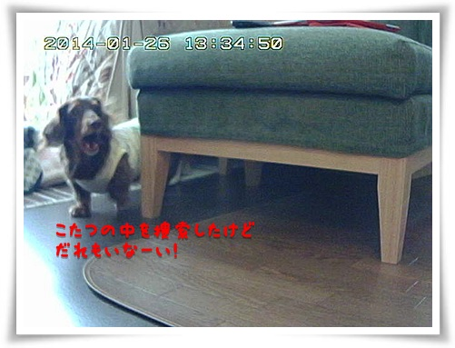 20140127-05.jpg