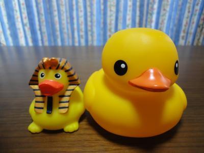 DSC00666_convert_20121020010104.jpg