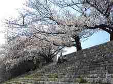 +++ りり☆Blog evolution +++ 広島在住OLの何かやらかしてる日記(・ω・)-DVC00204.jpg