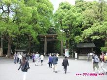 +++ りり☆Blog evolution +++ 広島在住OLの何かやらかしてる日記(・ω・)-20090503_025.jpg