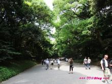+++ りり☆Blog evolution +++ 広島在住OLの何かやらかしてる日記(・ω・)-20090503_028.jpg