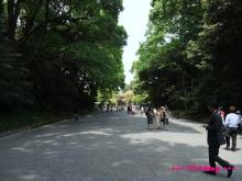 +++ りり☆Blog evolution +++ 広島在住OLの何かやらかしてる日記(・ω・)-20090503_040.jpg