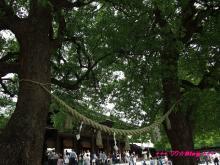 +++ りり☆Blog evolution +++ 広島在住OLの何かやらかしてる日記(・ω・)-20090503_056.jpg