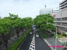 +++ りり☆Blog evolution +++ 広島在住OLの何かやらかしてる日記(・ω・)-20090504_020.jpg