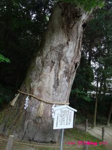 +++ りり☆Blog evolution +++ 広島在住OLの何かやらかしてる日記(・ω・)-20090524_137.jpg