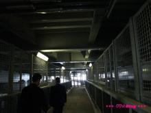+++ りり☆Blog evolution +++ 広島在住OLの何かやらかしてる日記(・ω・)-20090524_229.jpg