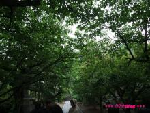 +++ りり☆Blog evolution +++ 広島在住OLの何かやらかしてる日記(・ω・)-20090524_290.jpg
