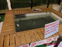 +++ りり☆Blog evolution +++ 広島在住OLの何かやらかしてる日記(・ω・)-20090524_363.jpg