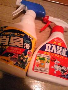 +++ りり☆Blog evolution +++ 広島在住OLの何かやらかしてる日記(・ω・)-DVC00399.jpg