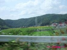+++ りり☆Blog evolution +++ 広島在住OLの何かやらかしてる日記(・ω・)-20090802_089.jpg