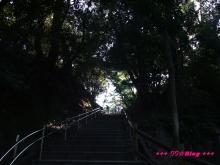 +++ りり☆Blog evolution +++ 広島在住OLの何かやらかしてる日記(・ω・)-20091012_033.jpg