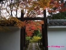 +++ りり☆Blog evolution +++ 広島在住OLの何かやらかしてる日記(・ω・)-20091115_043.jpg