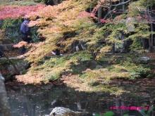 +++ りり☆Blog evolution +++ 広島在住OLの何かやらかしてる日記(・ω・)-20091115_057.jpg