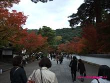 +++ りり☆Blog evolution +++ 広島在住OLの何かやらかしてる日記(・ω・)-20091115_097.jpg