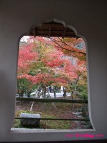 +++ りり☆Blog evolution +++ 広島在住OLの何かやらかしてる日記(・ω・)-20091115_106.jpg