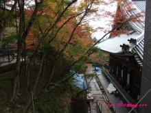 +++ りり☆Blog evolution +++ 広島在住OLの何かやらかしてる日記(・ω・)-20091115_116.jpg
