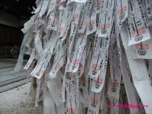 +++ りり☆Blog evolution +++ 広島在住OLの何かやらかしてる日記(・ω・)-20091115_194.jpg