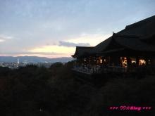+++ りり☆Blog evolution +++ 広島在住OLの何かやらかしてる日記(・ω・)-20091115_239.jpg
