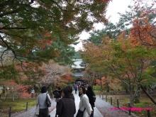 +++ りり☆Blog evolution +++ 広島在住OLの何かやらかしてる日記(・ω・)-20091115_072.jpg