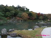 +++ りり☆Blog evolution +++ 広島在住OLの何かやらかしてる日記(・ω・)-20091116_080.jpg