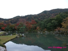 +++ りり☆Blog evolution +++ 広島在住OLの何かやらかしてる日記(・ω・)-20091116_085.jpg