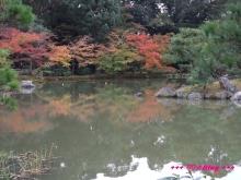 +++ りり☆Blog evolution +++ 広島在住OLの何かやらかしてる日記(・ω・)-20091116_142.jpg
