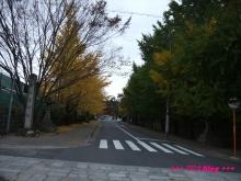 +++ りり☆Blog evolution +++ 広島在住OLの何かやらかしてる日記(・ω・)-20091116_174.jpg