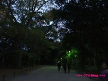 +++ りり☆Blog evolution +++ 広島在住OLの何かやらかしてる日記(・ω・)-20091116_218.jpg
