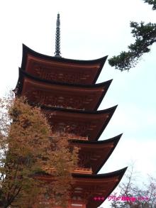 +++ りり☆Blog evolution +++ 広島在住OLの何かやらかしてる日記(・ω・)-20091121_042.jpg
