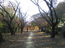 +++ りり☆Blog evolution +++ 広島在住OLの何かやらかしてる日記(・ω・)-DVC00184.jpg