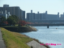 +++ りり☆Blog evolution +++ 広島在住OLの何かやらかしてる日記(・ω・)-20091123_079.jpg