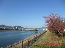 +++ りり☆Blog evolution +++ 広島在住OLの何かやらかしてる日記(・ω・)-20091123_100.jpg
