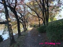 +++ りり☆Blog evolution +++ 広島在住OLの何かやらかしてる日記(・ω・)-20091123_121.jpg