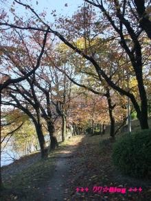 +++ りり☆Blog evolution +++ 広島在住OLの何かやらかしてる日記(・ω・)-20091123_122.jpg
