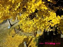 +++ りり☆Blog evolution +++ 広島在住OLの何かやらかしてる日記(・ω・)-20091128_049.jpg