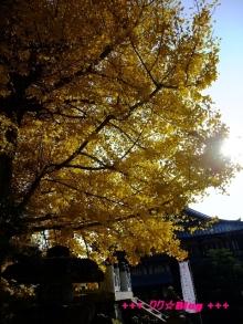 +++ りり☆Blog evolution +++ 広島在住OLの何かやらかしてる日記(・ω・)-20091128_054.jpg