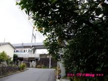 +++ りり☆Blog evolution +++ 広島在住OLの何かやらかしてる日記(・ω・)-20091212_010.jpg