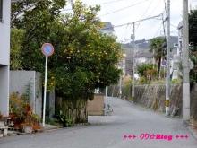 +++ りり☆Blog evolution +++ 広島在住OLの何かやらかしてる日記(・ω・)-20091212_024.jpg