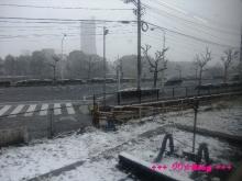 +++ りり☆Blog evolution +++ 広島在住OLの何かやらかしてる日記(・ω・)-20091231_010.jpg