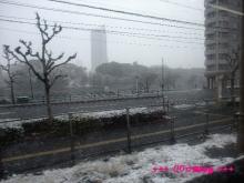 +++ りり☆Blog evolution +++ 広島在住OLの何かやらかしてる日記(・ω・)-20091231_011.jpg