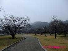 +++ りり☆Blog evolution +++ 広島在住OLの何かやらかしてる日記(・ω・)-20091231_018.jpg